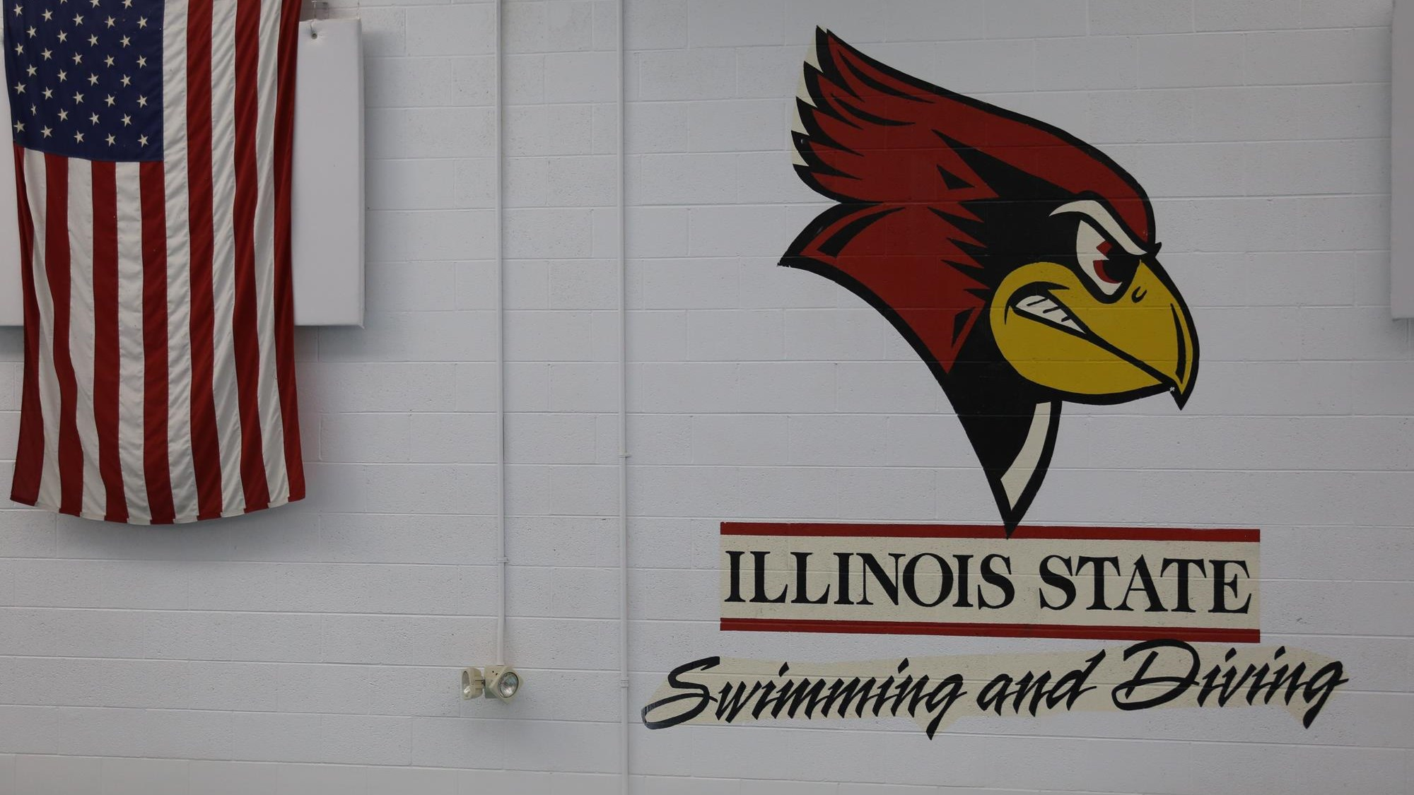 Swimming and Diving - Illinois State University Athletics